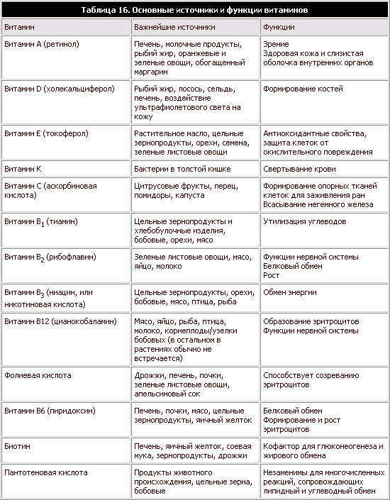 Шпаргалки По Биохимии Витамины