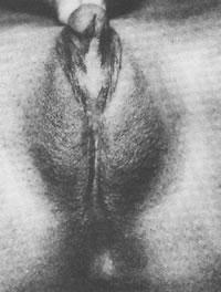 Раннее половое созревание женщин связано с отсутствием биологического отца